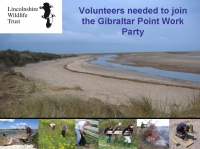 Volunteer at your local nature reserve...
