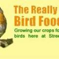 Wild Bird Food – Wild Bird Seed – Garden Bird Food – Garden Bird Seed - Bird Special Offers